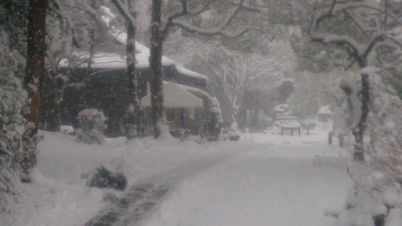 雪景色160124_2