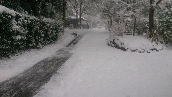 雪景色160124_1