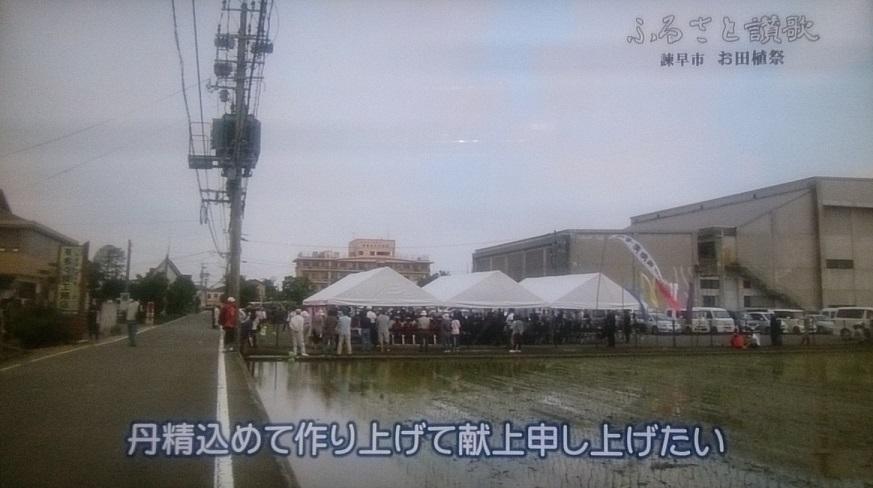 ふるさと讃歌(NCC)お田植祭160720_4